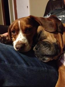 Ernie and Kali